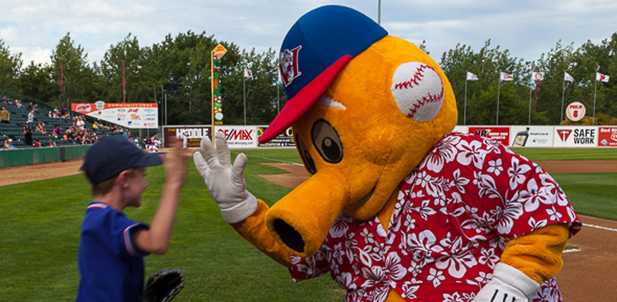 Goldeyes Mascot